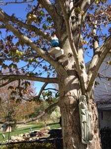 Travelosity in tree