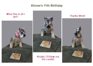 Kinzee's 11th Birthday