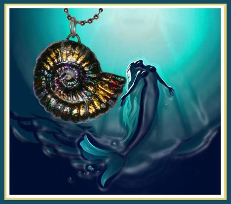 2017 Nautilus Shell